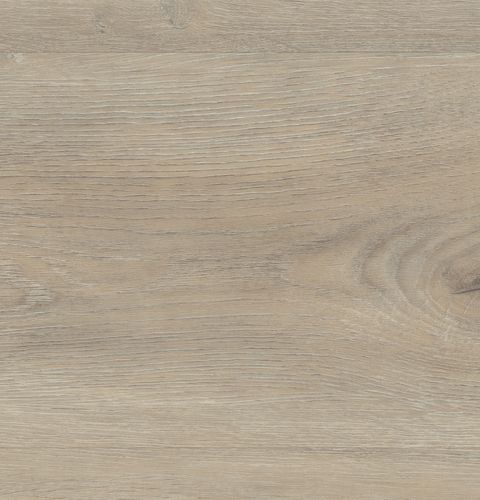 wineo Bodenbelag 600 wood XL Aumera Oak Native