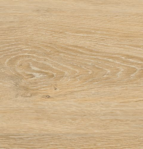wineo Bodenbelag Vinyl 600 wood Victoria Oak Native