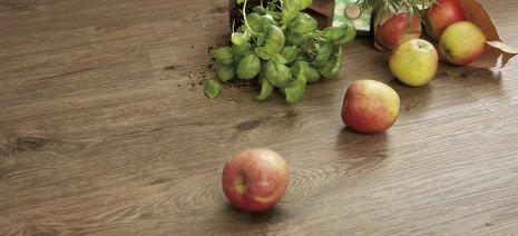wineo PURLINE Bioboden Holzubtik Obst