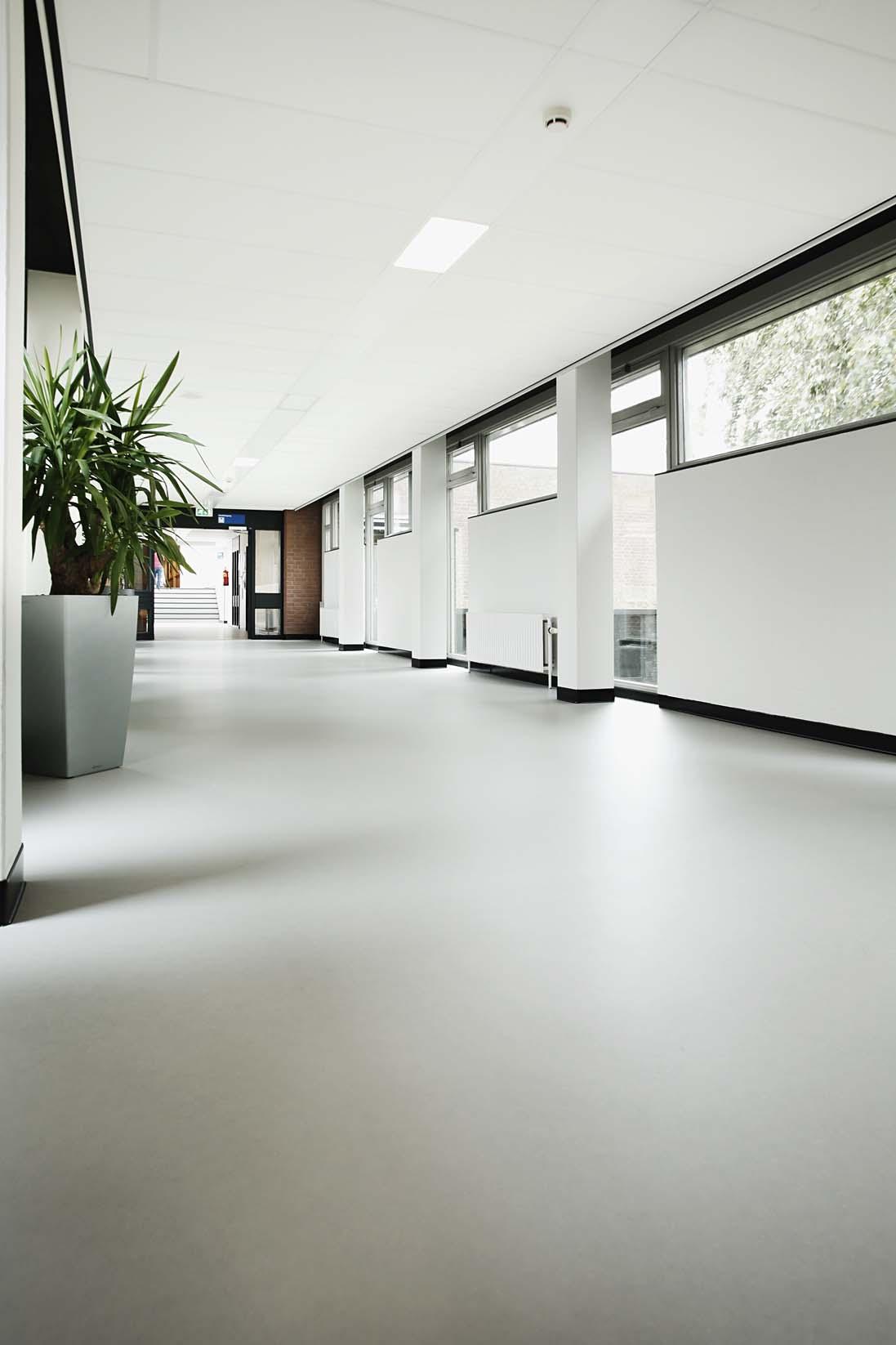 wineo Purline Bioboden Rollenware weiß modern hell Korridor große Glasfenster Klinikum
