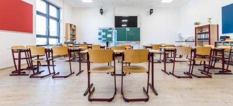 wineo PURLINE Bioboden Schule Klassenzimmer Holzoptik