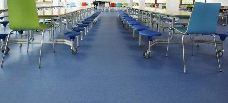 wineo PURLINE Bioboden dunkel Schule Aula Kantine Speisesaal moderne Einrichtung
