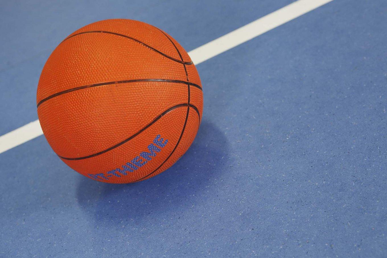 wineo PURLINE Bioboden dunkel Schule Sporthalle Basketball moderne Einrichtung
