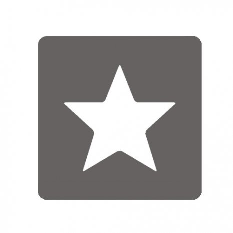 Icon Favorit