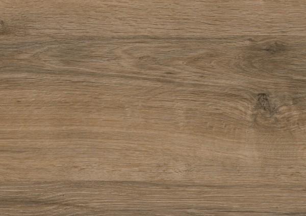 Detail_PL041R_Valley_Oak_Soil.jpg